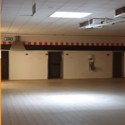 Location Local commercial Carcassonne 1150 m²