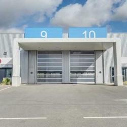 Location Local d'activités Escalquens 595 m²