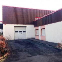 Vente Local d'activités Dammarie-les-Lys 1788 m²