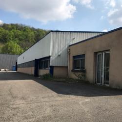Vente Local d'activités Fleurieu-sur-Saône (69250)