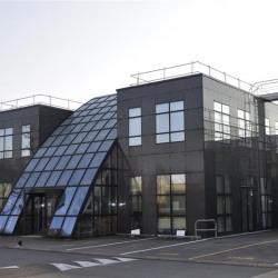 Location Local d'activités Roissy-en-France 402 m²