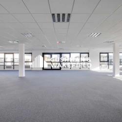Location Bureau Guyancourt 281 m²
