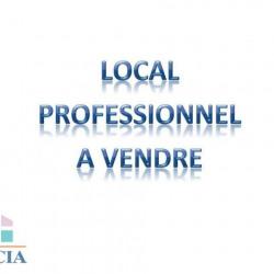 Vente Local commercial Lourdes 123 m²