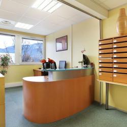 Location Bureau Grenoble 30 m²