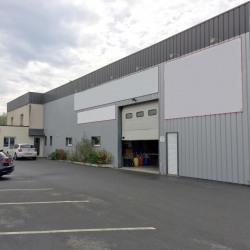 Vente Local d'activités Guichen 767 m²