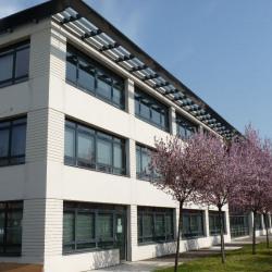 Location Bureau Lyon 7ème 358 m²