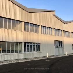 Vente Local d'activités Reims 240 m²