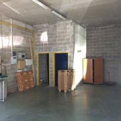 Vente Local d'activités Stains 310 m²