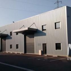 Location Local d'activités Saint-Priest 214 m²