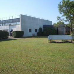 Vente Local d'activités Mérignac 1294 m²