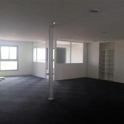Vente Bureau Muret 250 m²