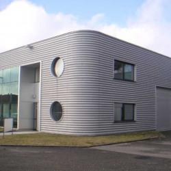 Location Local d'activités Hœnheim (67800)