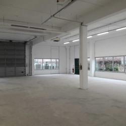 Location Local d'activités Villepinte 374 m²