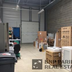 Location Local d'activités Rennes 312 m²