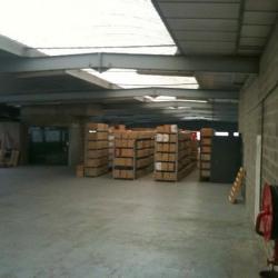Location Entrepôt Ivry-sur-Seine 250 m²