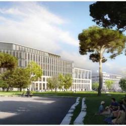 Location Bureau Marseille 3ème 9279 m²