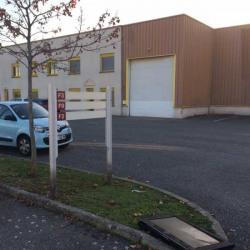 Location Local d'activités Vénissieux 350 m²