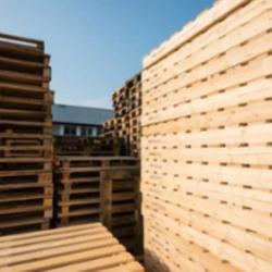 Vente Local d'activités Agde 300 m²