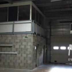 Location Local d'activités Décines-Charpieu 506 m²