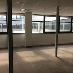 Location Bureau Roissy-en-France 3685 m²
