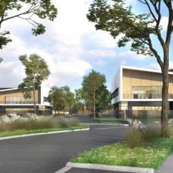 Vente Local d'activités Villebon-sur-Yvette 372 m²