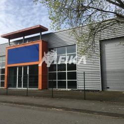 Vente Local d'activités Toulouse (31200)