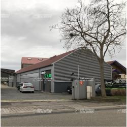 Location Local d'activités Barr 400 m²