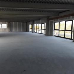 Location Bureau Castelnau-d'Estrétefonds 295 m²