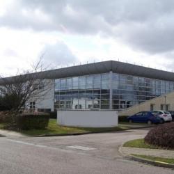 Location Bureau Mont-Saint-Aignan 522 m²