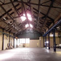 Location Local d'activités Domène 8000 m²