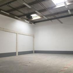 Vente Local d'activités Lisses 534 m²