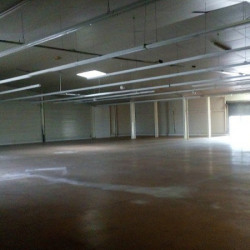 Location Local commercial Fronton 430 m²