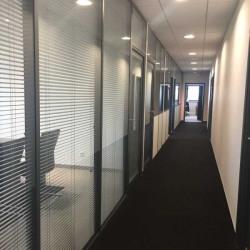 Location Bureau Schiltigheim 696 m²