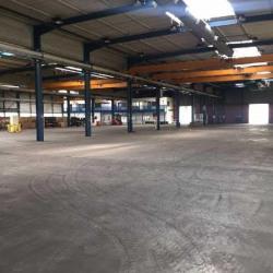 Location Local d'activités Schweighouse-sur-Moder 4160 m²