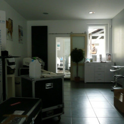 Vente Local commercial Toulouse 260 m²