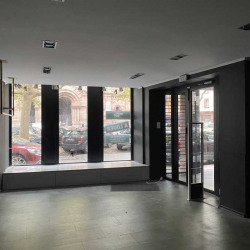 Location Local commercial Strasbourg 200 m²