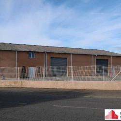Location Local d'activités Cugnaux 760 m²
