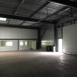 Location Entrepôt Mios 280 m²