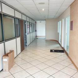 Location Bureau Albi 300 m²