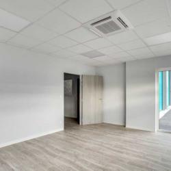 Location Local d'activités Vénissieux 3837 m²