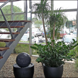 Location Bureau Montpellier 371,85 m²
