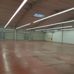 Location Local commercial Bouloc 1346 m²