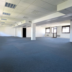 Location Bureau Lyon 6ème 299 m²