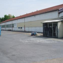 Location Entrepôt Montigny-lès-Cormeilles 470 m²
