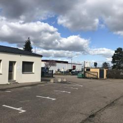 Location Bureau Houdemont 67 m²