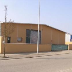 Location Local d'activités Colomiers 810 m²