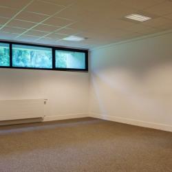 Location Bureau Gif-sur-Yvette 50 m²