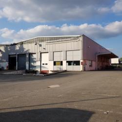 Location Entrepôt Chennevières-sur-Marne (94430)