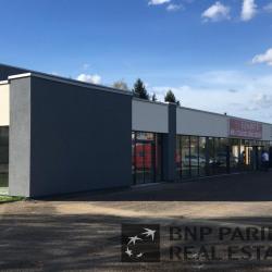 Location Local d'activités Vandœuvre-lès-Nancy 502 m²