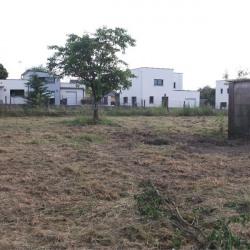 Vente Terrain Pipriac 1262 m²